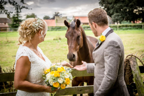 bride-groom-horse